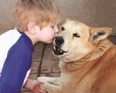 Kids and Dogs - Whole Dog Journal