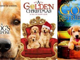 golden retriever movies